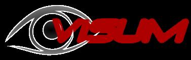 visum_logo